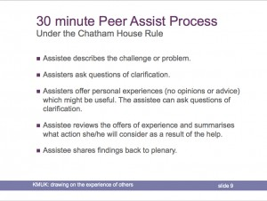 Peer Assist Process